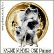 GCH. NARNIE NUMBER ONE  Palumar